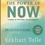 Download The Power of Now: A Guide to Spiritual Enlightenment PDF