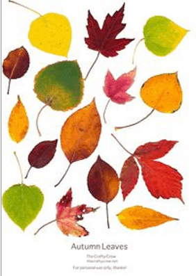 Falling leaves PDF