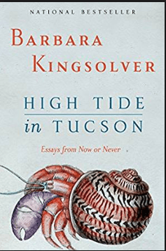 High Tide in Tucson PDF