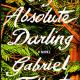 My Absolute Darling Pdf