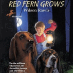 Download Where the Red Fern Grows Pdf EBook Free