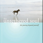 Download The Untethered Soul Pdf EBook Free